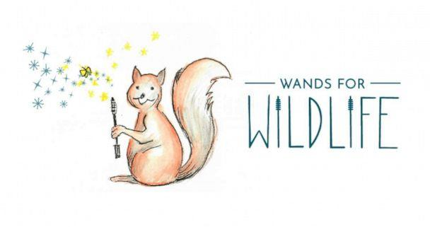 PHOTO: Through Appalachian Wildlife Refuge's Wands for Wildlife program you can donate your old mascara wands toward a great cause. (Wands for Wildlife)