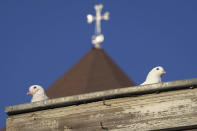 Pigeons sit on the roof in Stepanakert, in the separatist region of Nagorno-Karabakh, Friday, Oct. 30, 2020. The Azerbaijani army has closed in on a key town in the separatist territory of Nagorno-Karabakh following more than a month of intense fighting. (AP Photo)