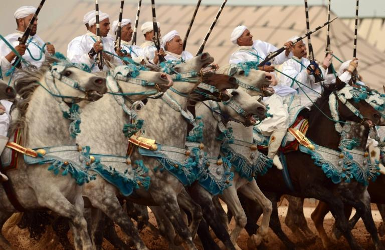 The equestrian art of tbourida in Morocco was above all the fusion of man and horse, especially the Barb, an ancient North African breed famed for its hardiness and stamina