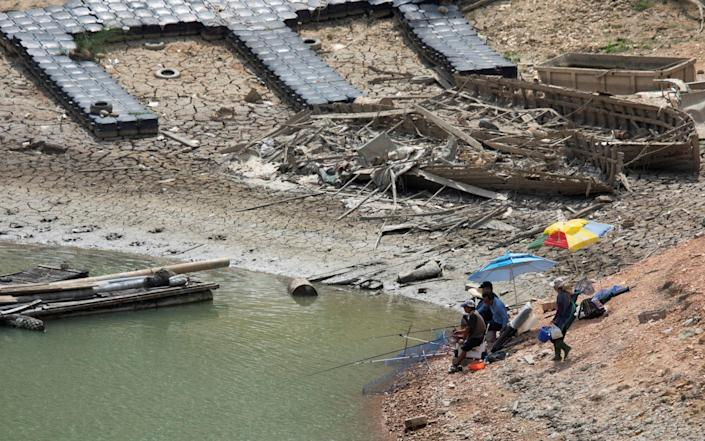 People fish at the Sun Moon Lake with low water levels during an island wide drought - ANNABELLE CHIH/REUTERS