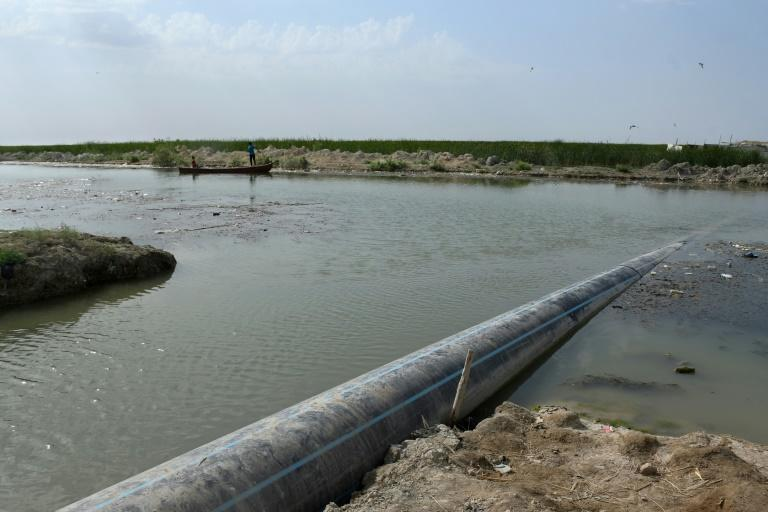 A sewage pipe crossing the polluted Iraqi marshes