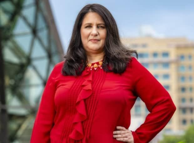 Lynne Groulx is the CEO of the Native Women's Association of Canada. (NWAC - image credit)