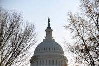 FILE PHOTO: The U.S. Capitol dome is seen in Washington