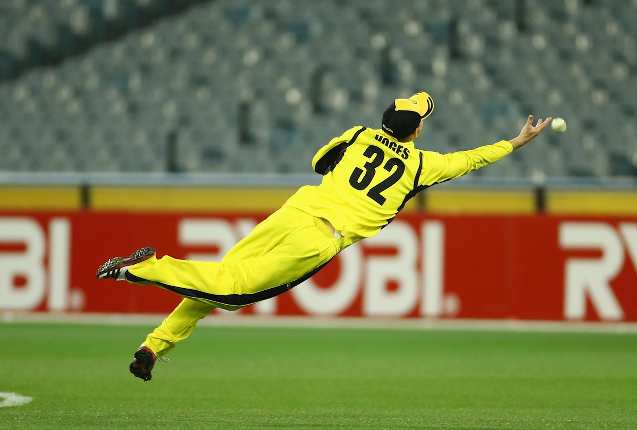 MELBOURNE, AUSTRALIA - NOVEMBER 07: Adam Voges of the Warriors dives in an attempt to catch Aaron Finch of the Bushrangers during the Ryobi One Day Cup match between the Victorian Bushrangers and the Western Australia Warriors at Melbourne Cricket Ground on November 7, 2012 in Melbourne, Australia.  (Photo by Robert Cianflone/Getty Images)