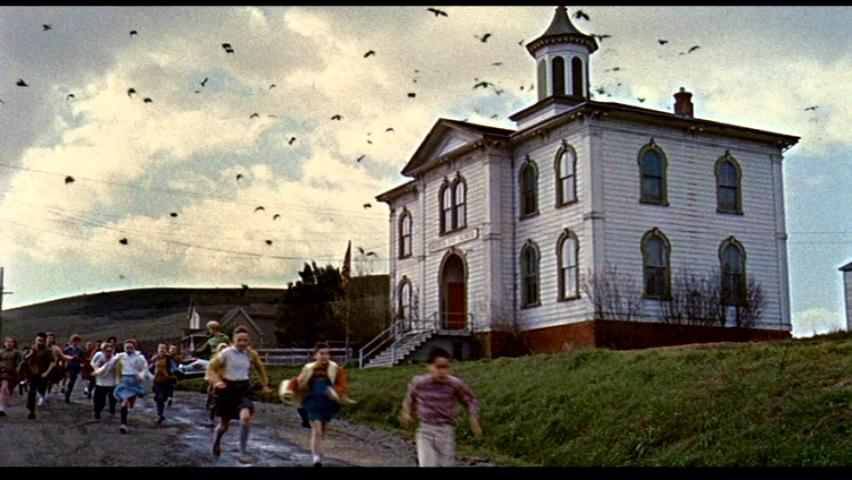 """A still from the 1963's """"The Birds."""" (Photo courtesy of Hitchcock Zone)"""