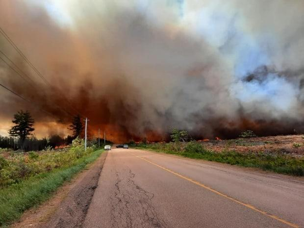 Firefighters have contained a forest fire that covered more than 30 hectares of land in a private woodlot in Sainte-Marie-de-Kent, N.B., on Thursday, June 10, 2021. (Submitted by Tania Ferguson - image credit)