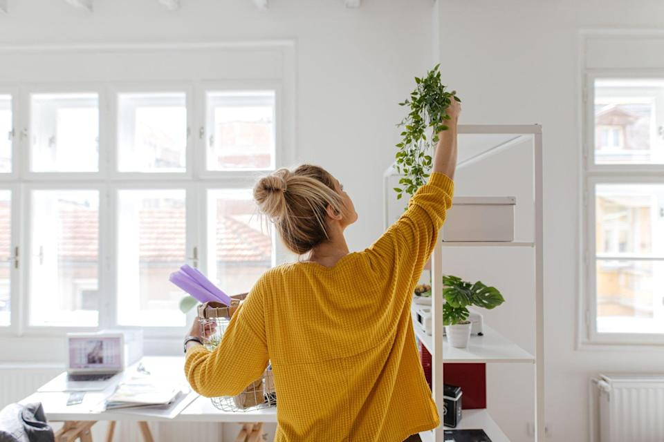 How To Feng Shui Your Apartment for Better Mental Health/Sleep
