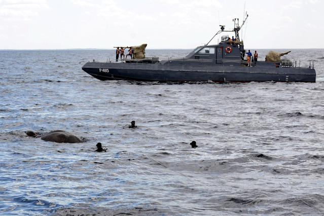 <p>A handout photo made available by Sri Lanka Navy media unit shows Sri Lanka Navy divers trying to tie a rope around an elephant who had strayed away into the open sea and trying to stay afloat off the East coast of the Island on July 12, 2017. (Photo: Sri Lanka Navy media unit/REX/Shutterstock) </p>