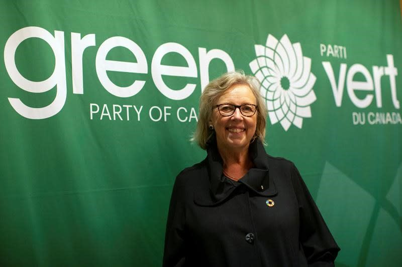 A list of some of the Green Party's promises