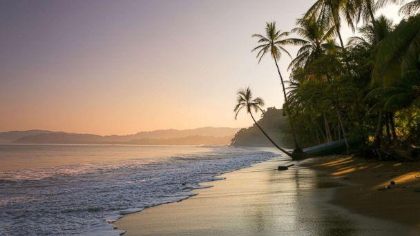 PHOTO: A palm fringed beach in Bahia Drakes, Osa Peninsula, Costa Rica is pictured in this undated stock photo. (STOCK PHOTO/Getty Images)