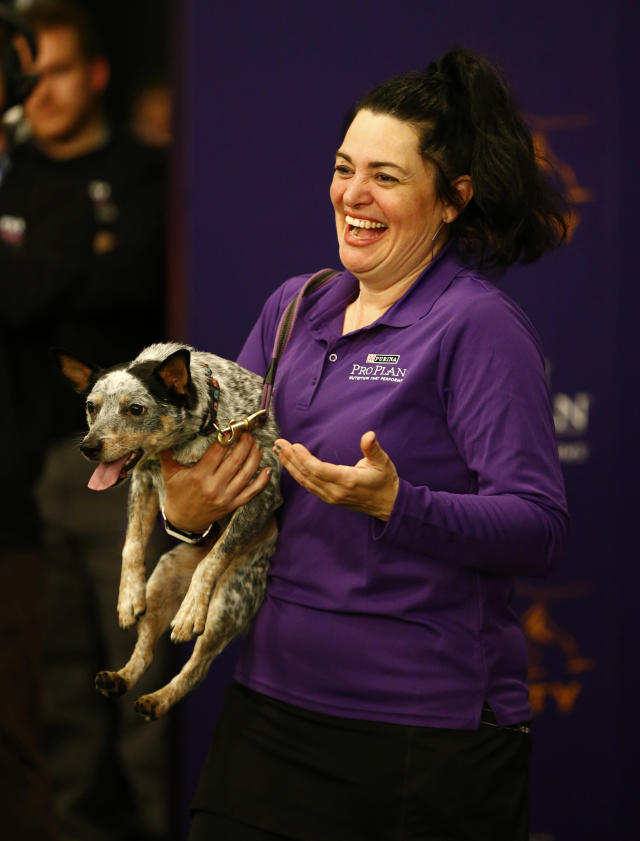 """THIS CORRECTS THE LAST NAME TO TOPOL AND NOT TOOL AS ORIGINALLY SENT - Lisa Topol displays her ribbon after winning in the masters agility championship with her dog """"Plop"""" during the Westminster Kennel Club Dog Show, Saturday, Feb. 9, 2019, in New York. (AP Photo/Noah K. Murray)"""