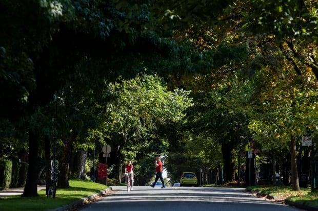 Metro Vancouver planners say Vancouver's West End is an example of a healthy tree canopy in a high density neighbourhood. (Ben Nelms/CBC - image credit)