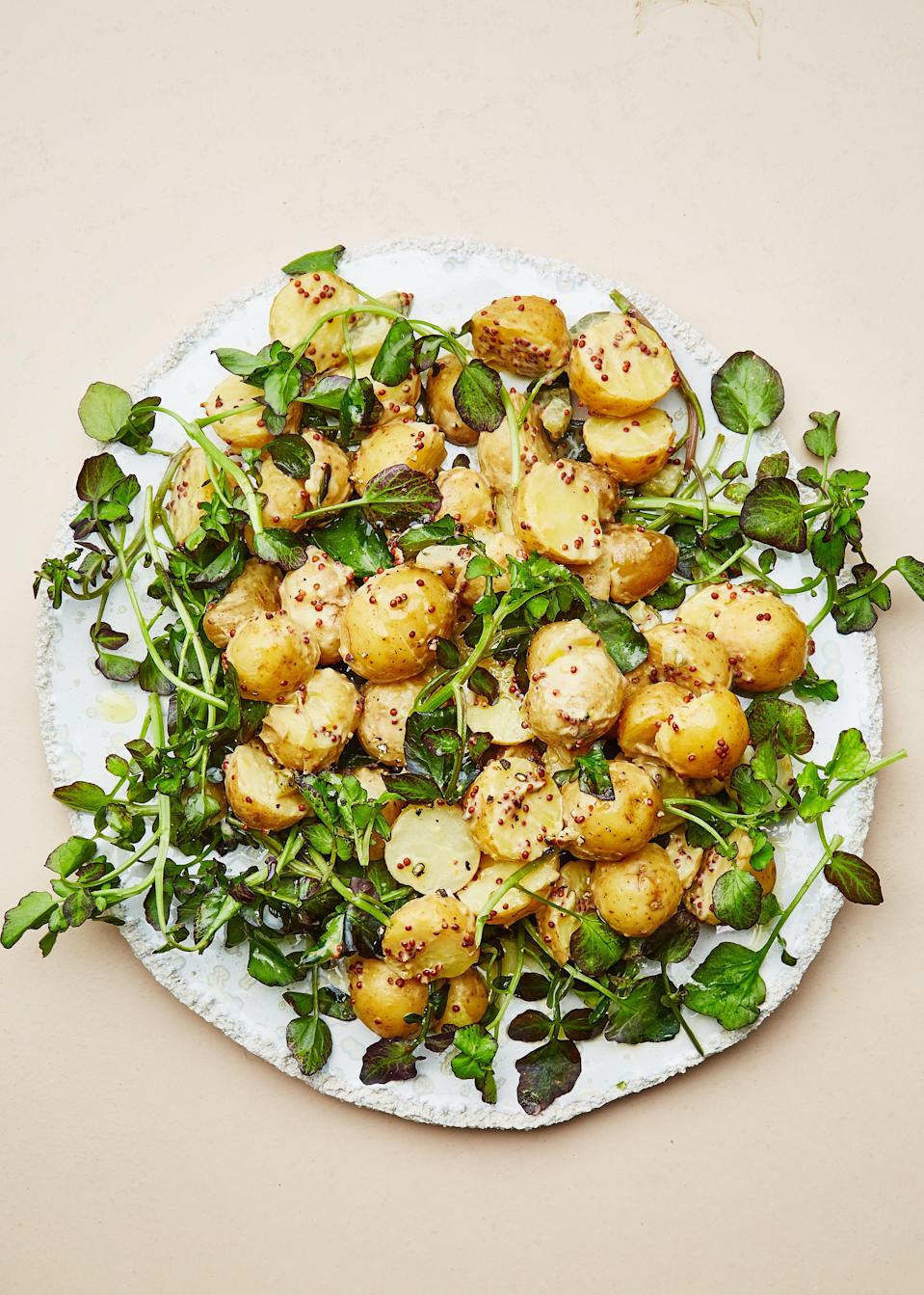 "Peewee Dutch Yellow Potatoes are the perfect tiny potato for this recipe, but if you can't find them, just use the smallest fingerling or Yukon Gold potatoes you can buy. <a href=""https://www.bonappetit.com/recipe/potato-salad-with-mustard-sauce?mbid=synd_yahoo_rss"" rel=""nofollow noopener"" target=""_blank"" data-ylk=""slk:See recipe."" class=""link rapid-noclick-resp"">See recipe.</a>"