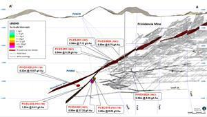 Cross section of the Providencia Mine vein system
