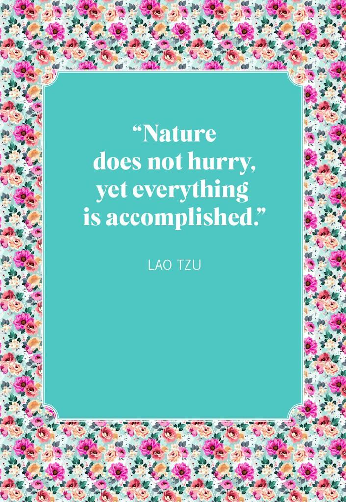 """<p>""""Nature does not hurry, yet everything is accomplished.""""</p>"""