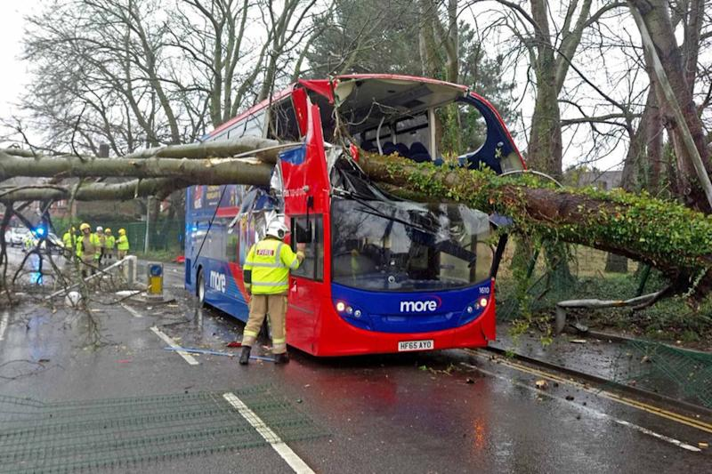A tree fell onto a bus in Poole, with no reported injuries, as Storm Erik brought strong winds to parts of the country. (PA)