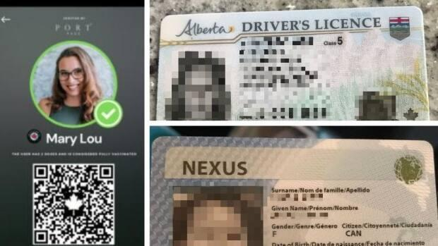 Vaccine passport app Portpass may have exposed users' personal data like drivers' licences and photos. CBC was able to access the photos on the right that belong to users on the app. The IDs have been blurred to protect those users' identities and information. (Portpass/CBC - image credit)