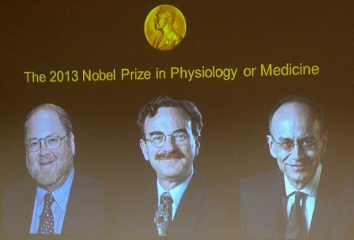 A screen displays photos of (left to right) James E Rothman from the US, Randy W Schekman from the US and Thomas C Suedhof from Germany, joint winners of the Nobel prize for medicine, at a press conference on October 7, 2013 in Stockholm