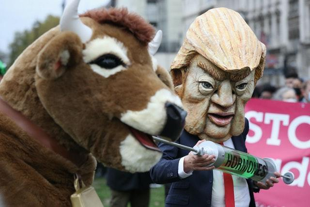 A protest in Parliament Square featured a demonstrator dressed as Donald Trump and a pantomime cow (Jonathan Brady/PA)