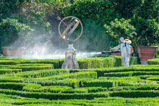 PHOTO: An employee sprays box trees in the park of the Villa Doria Pamphili in Rome on May 4, 2020, as Italy starts to ease its lockdown aimed at curbing the spread of the novel coronavirus. (Andreas Solaro/AFP via Getty Images)