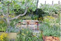 <p><strong>SANCTUARY GARDEN | Award: SILVER</strong></p><p>Designed by Alan Williams, this garden is inspired by the celebrated Nordic restaurant Noma, and focuses on conserving nature's bounty through fermentation and preservation. The garden seeks to champion and empower the over 60s and challenge the out-dated stereotypes of ageing. </p>