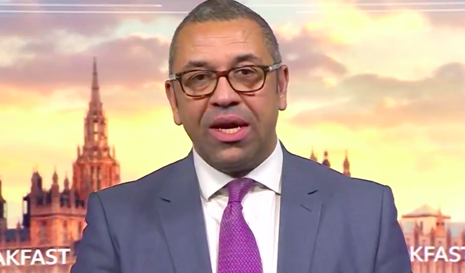 Junior foreign minister James Cleverly said the army could help transport the coronavirus vaccine. (BBC)