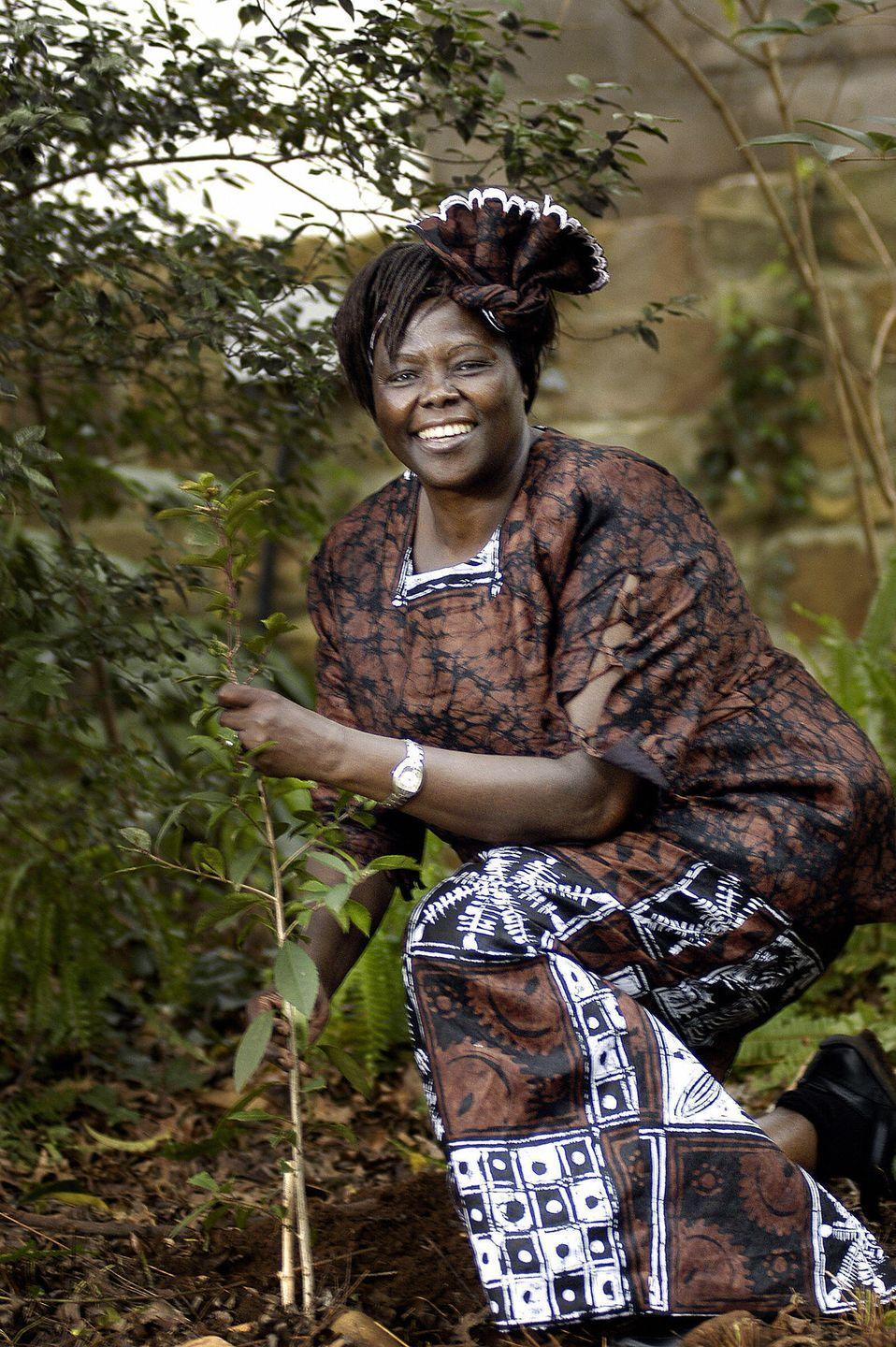 """<p>Wangari Maathai became the first black woman to win the <a href=""""https://www.youtube.com/watch?v=dZap_QlwlKw"""" rel=""""nofollow noopener"""" target=""""_blank"""" data-ylk=""""slk:2004 Nobel Peace Prize"""" class=""""link rapid-noclick-resp"""">2004 Nobel Peace Prize </a>for her environmental work in Kenya. She was also the first woman in East and Central Africa to earn a doctorate degree. Maathai served as the chairman for six years on the National Council of Women in Kenya, and introduced the idea of accomplishing the largest tree-planting campaign in Africa—the Green Belt Movement. The organization <a href=""""https://www.greenbeltmovement.org/what-we-do/tree-planting-for-watersheds"""" rel=""""nofollow noopener"""" target=""""_blank"""" data-ylk=""""slk:has planted over 51 million trees"""" class=""""link rapid-noclick-resp"""">has planted over 51 million trees</a> in Kenya since its founding in 1977. </p>"""