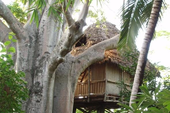 best treehouse stays, africa treehouse hotels, safari stays africa