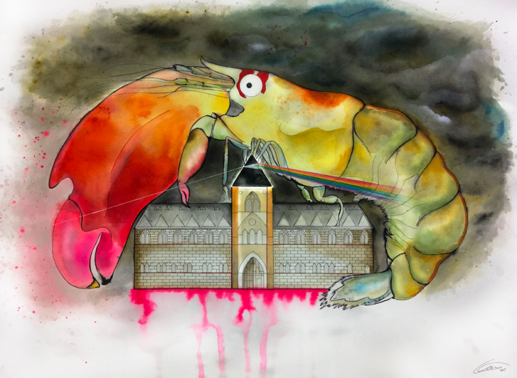 Synalpheus pinkfloydi features in a mock up of Another Shrimp in the Wall (PA)
