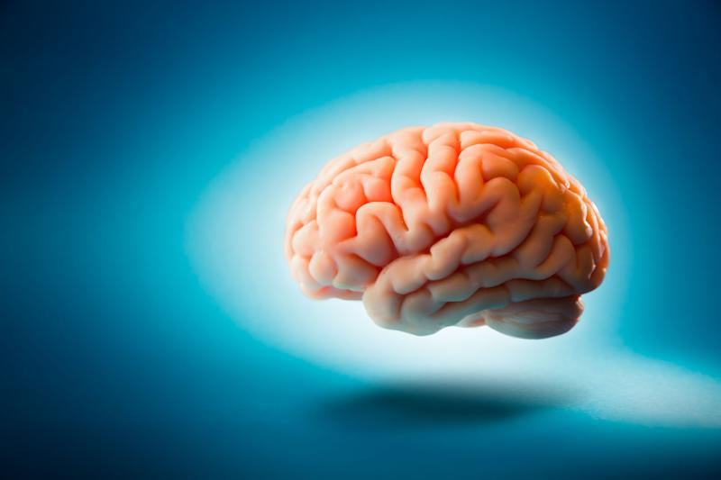 Scientists Connect Three Peoples Brains Together In Brainnet