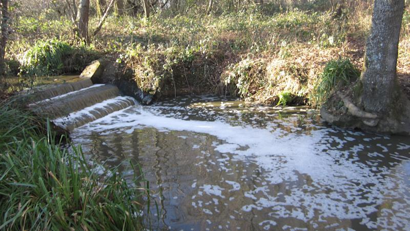 College fined £50,000 for polluting stream with slurry