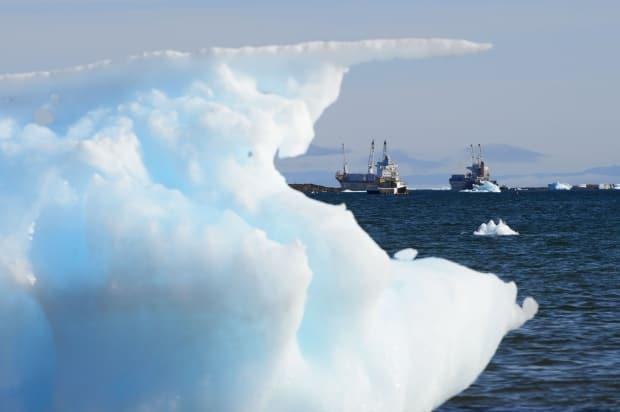In the 'worst case scenario,' an oil spill in the Arctic could cost more than $9 billion after five years with no intervention, says a new study led by Mawuli Afenyo. (Sean Kilpatrick/The Canadian Press - image credit)