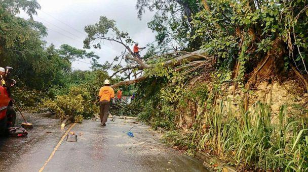 PHOTO: Volunteer members of the Roving Response Team remove a tree blocking a road after Tropical Storm Dorian passed overnight in Brighton St. George, Barbados Aug. 27, 2019. (Nigel R. Browne/Reuters)