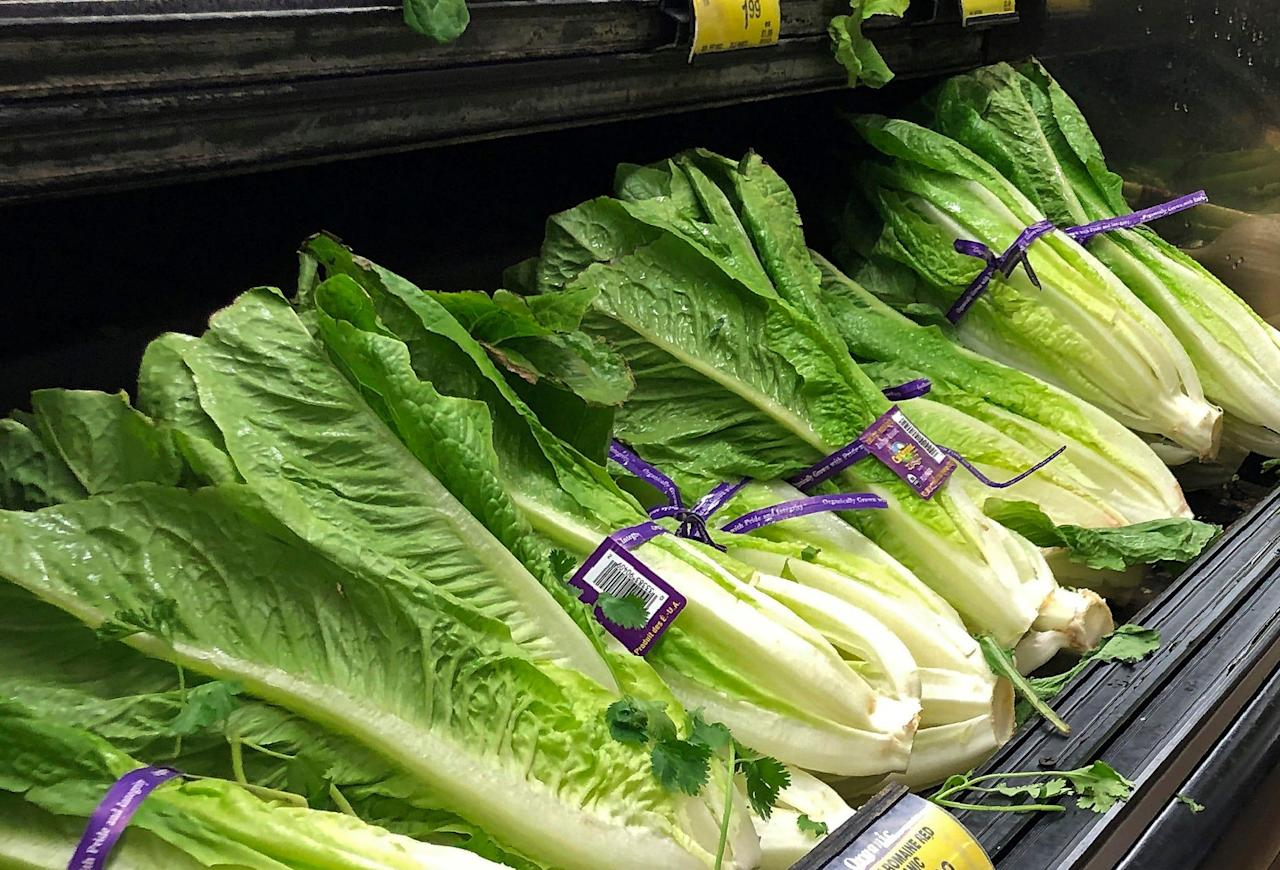 Romaine lettuce E. coli outbreak: Why it's hard to keep romaine safe from E. coli, other bacteria