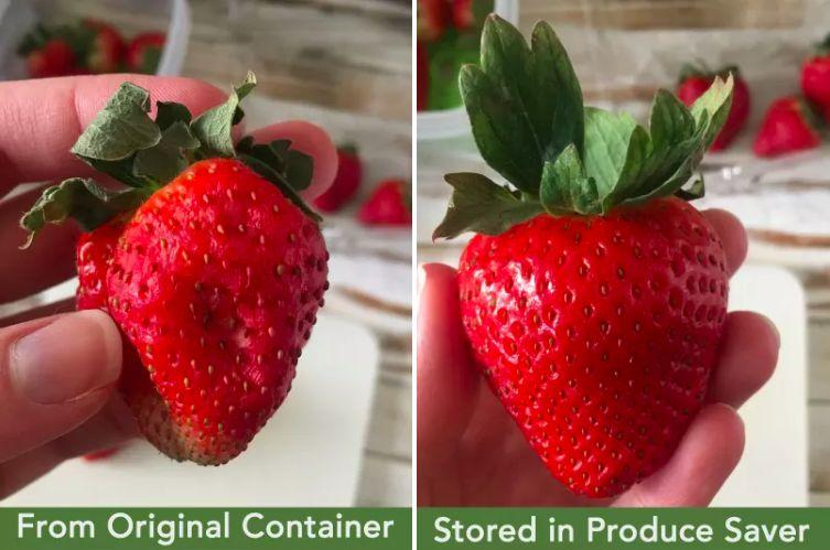 """Made with venting technology, these containers will help keep your produce fresher for longer — no more tossing soggy veggies into the trash after two days!<br /><br /><strong>Promising review:</strong>""""These containers are magical little gems and in my opinion worth every single penny that I paid for them. We buy a lot of fruit and greens (lettuce, kale, spinach, etc.) Normally, I can expect these items to start to go bad in my refrigerator by the end of the week after I've brought them home from the grocery store.<strong>These containers have changed my life! My strawberries stay fresher longer, as does the kale and spinach and I am a convert.</strong>I need about three more of these so that I have one for my grapes and other fruits. I also have the larger size and it does exactly what it says. No joke we went out of town for one week and came home and the strawberries still looked healthy and were ready to eat. Um... yes, please? I would recommend these to any and everyone."""" —<a href=""""https://www.amazon.com/dp/B01BD166DY?tag=huffpost-bfsyndication-20&ascsubtag=5890048%2C2%2C36%2Cd%2C0%2C0%2C0%2C962%3A1%3B901%3A2%3B900%3A2%3B974%3A3%3B975%3A2%3B982%3A2%2C16493012%2C0"""" target=""""_blank"""" rel=""""noopener noreferrer"""">DEW<br /></a><br /><strong>Get them from Amazon for<a href=""""https://www.amazon.com/dp/B01BD166DY?tag=huffpost-bfsyndication-20&ascsubtag=5890048%2C2%2C36%2Cd%2C0%2C0%2C0%2C962%3A1%3B901%3A2%3B900%3A2%3B974%3A3%3B975%3A2%3B982%3A2%2C16493012%2C0"""" target=""""_blank"""" rel=""""noopener noreferrer"""">$12.75+</a>each (available in six sizes and in sets of multiples).</strong>"""