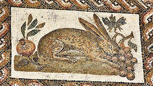 Rabbits have appeared in Roman mosaics. (PA)