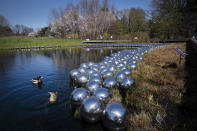 """Ducks swim along Yayoi Kusama's installation of floating orbs, """"Your Narcissism for Sale,"""" at the New York Botanical Garden, Thursday, April 8, 2021 in New York. The expansive exhibit has opened, and ticket sales have been brisk in a pandemic-weary city hungry for more outdoor cultural events. (AP Photo/Mark Lennihan)"""