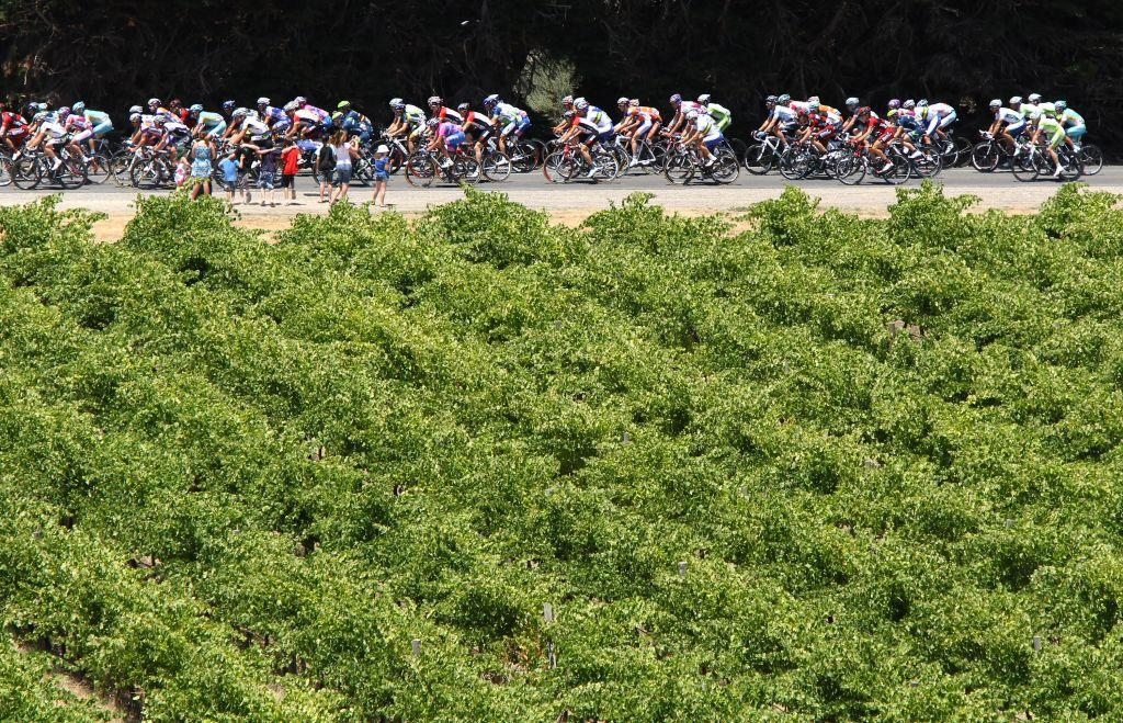 <b>MCLAREN VALE, AUSTRALIA </b><br>Cyclists ride past vineyards in McLaren Vale in Adelaide, one of Australia's most famous wine-making regions. The renowned Hardy and d'Arenberg wineries are located here.