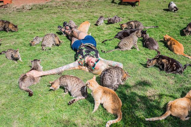 <p>Kitten Lady is surrounded by rescued felines at the the Lanai Cat Sanctuary in Hawaii. (Photo: Andrew Marttila/Caters News) </p>
