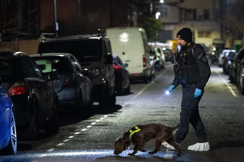 Police and a sniffer dog at the scene in Seven Kings (PA)