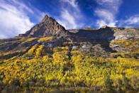 """<p><strong>Where to go:</strong> A winding scenic byway carves through <a href=""""https://www.fs.usda.gov/recarea/htnf/recreation/fishing/recarea/?recid=75383&actid=42"""" rel=""""nofollow noopener"""" target=""""_blank"""" data-ylk=""""slk:Lamoille Canyon"""" class=""""link rapid-noclick-resp"""">Lamoille Canyon</a> in the Ruby Mountains, or you can travel by foot along the Ruby Crest trail for views of glacial lakes and valleys. </p><p><strong>When to go: </strong>Early or Mid-November</p><p><a class=""""link rapid-noclick-resp"""" href=""""https://go.redirectingat.com?id=74968X1596630&url=https%3A%2F%2Fwww.tripadvisor.com%2FHotels-g45937-Elko_Nevada-Hotels.html&sref=https%3A%2F%2Fwww.redbookmag.com%2Flife%2Fg34045856%2Ffall-colors%2F"""" rel=""""nofollow noopener"""" target=""""_blank"""" data-ylk=""""slk:FIND A HOTEL"""">FIND A HOTEL</a></p>"""