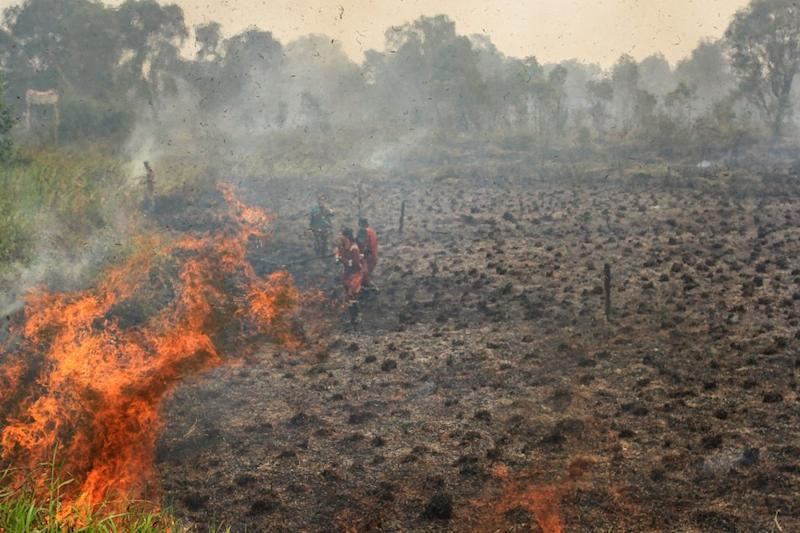 Indonesian firefighters battle a blaze at a peatland forest in Ogan Ilir, South Sumatra September 20, 2019. — AFP pic