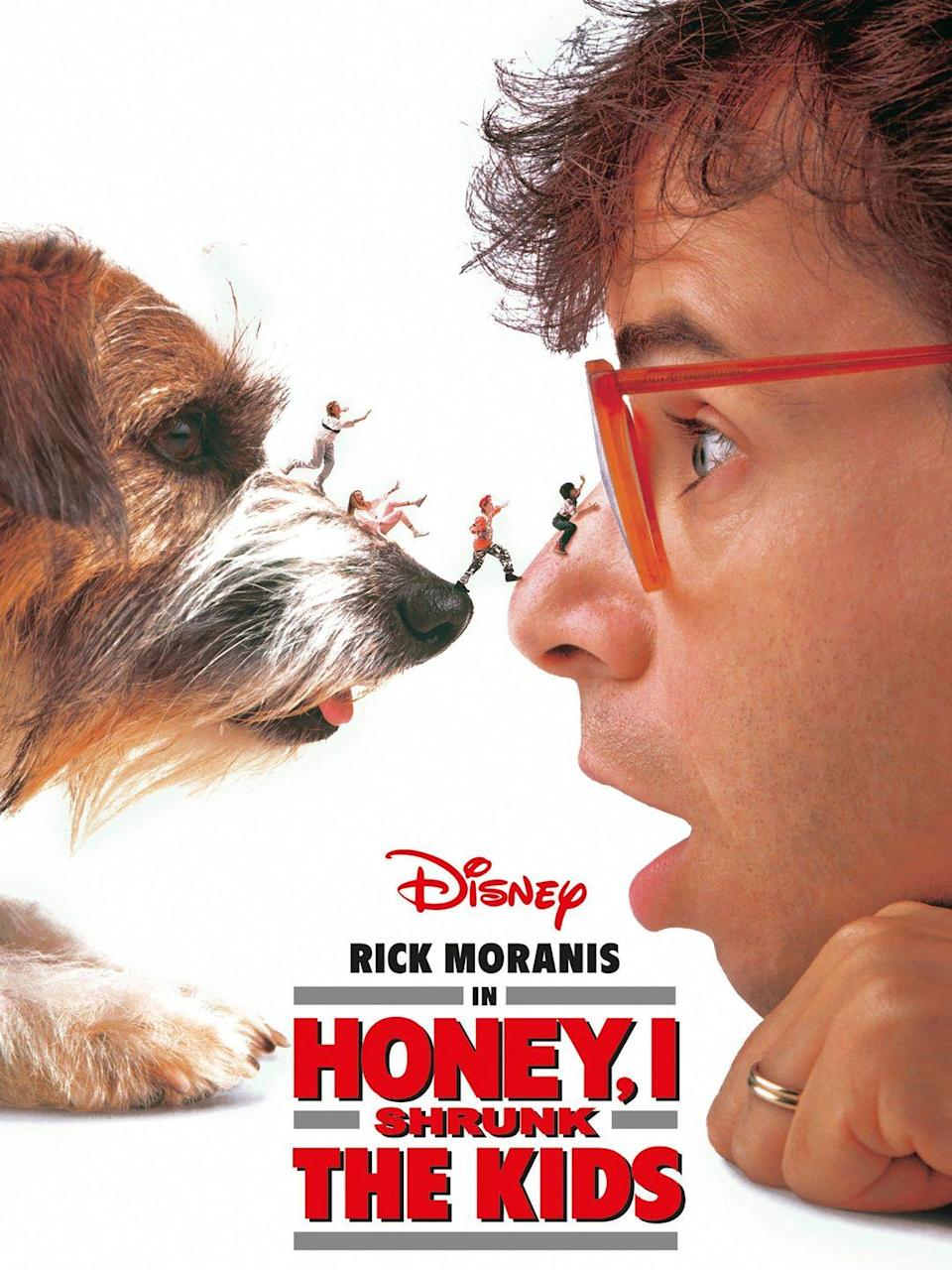 """<p><a class=""""link rapid-noclick-resp"""" href=""""https://www.amazon.com/Honey-Shrunk-Kids-Rick-Moranis/dp/B00787IR2Q/?tag=syn-yahoo-20&ascsubtag=%5Bartid%7C10063.g.36700668%5Bsrc%7Cyahoo-us"""" rel=""""nofollow noopener"""" target=""""_blank"""" data-ylk=""""slk:Watch Now"""">Watch Now</a></p><p>When an inventor accidentally resizes his children and his neighbor's children with a shrinking machine and throws the teeny-tiny youth into the trash (also an accident), the group must fend for themselves against scary things like sprinklers, ants, and a scorpion.</p>"""