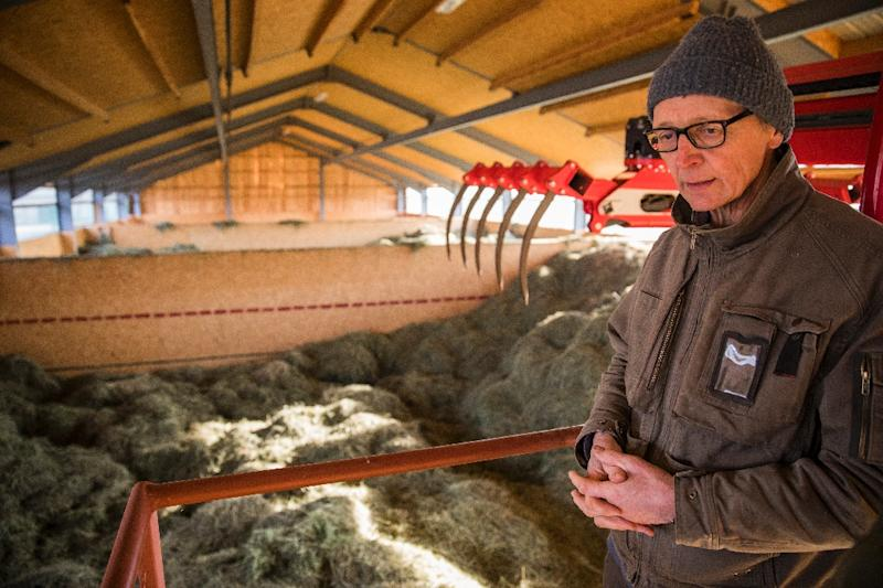 Heiner Luetke Schwienhorst has joined forces with two other German farmers and Greenpeace to challenge the government's failure to meet its own climate targets (AFP Photo/Odd ANDERSEN)