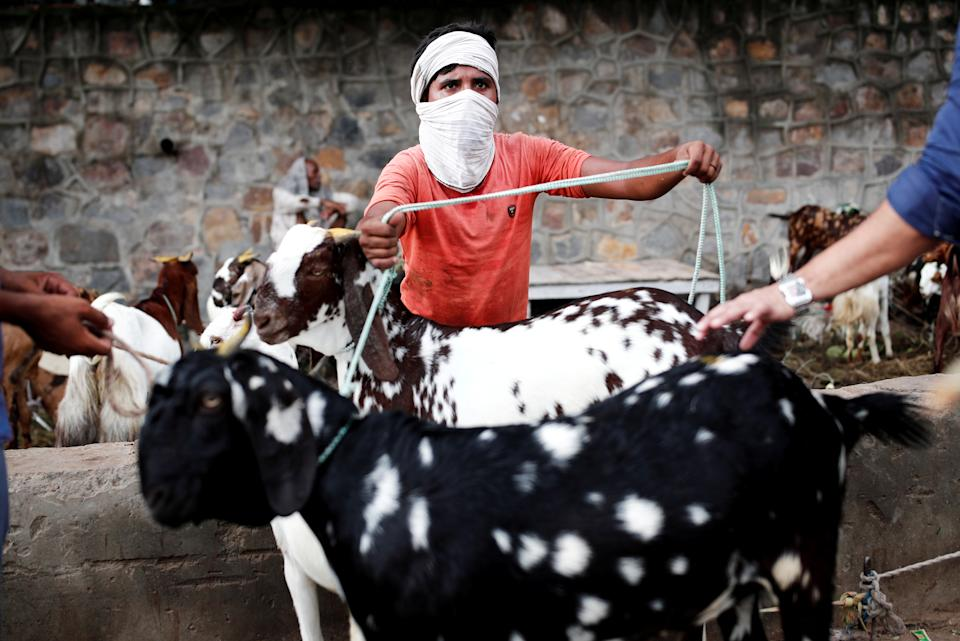 A trader using a cloth as a protective face mask deals with customers at a livestock market ahead of the Muslim festival of Eid al-Adha, amidst the coronavirus disease (COVID-19) outbreak in New Delhi, India, July 28, 2020. REUTERS/Adnan Abidi TPX IMAGES OF THE DAY