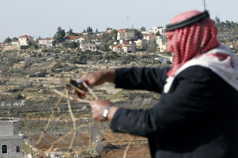 A Palestinian man prunes vines in the West Bank village of Beit Omar, with the Israeli settlement of Karmei Tzour seen in the background, on February 26, 2017
