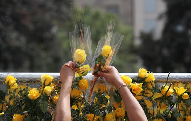 A woman decorates a fence with yellow roses in support of imprisoned pro-independence leaders during Sant Jordi's day at Catalunya square in Barcelonaa, Spain April 23, 2018. REUTERS/Albert Gea