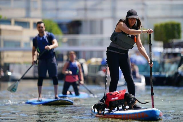 A woman takes her dog paddle-boarding on the canal in Paddington Basin, north London