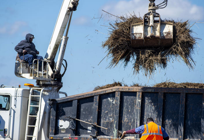 Terrebonne Parish solid waste crews remove marsh grass that washed across La. 56 in Cocodrie, La., during Hurricane Zeta, as residents slowly return to their homes and fishing camps to assess the damage on Thursday, Oct. 29, 2020. (Chris Granger/The Advocate via AP)