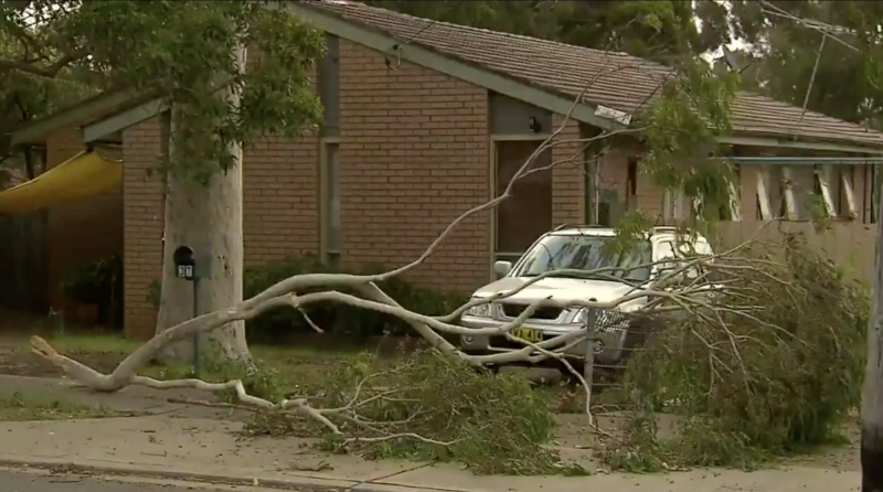 Emergency crews in NSW received 80 calls overnight. Source: Today